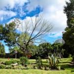 jardin_23