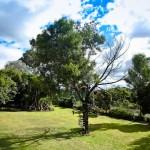 jardin_26