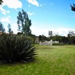 jardin_46
